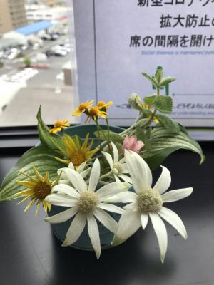 Photo_20200521132801
